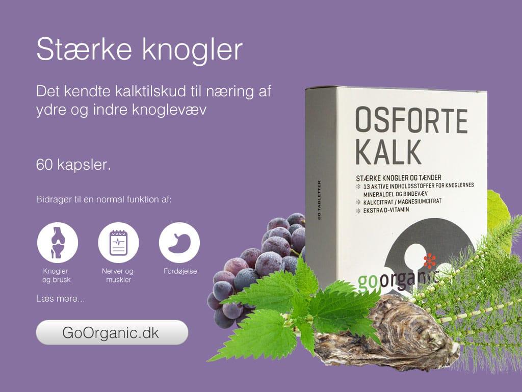 New_Osforte_Kalk